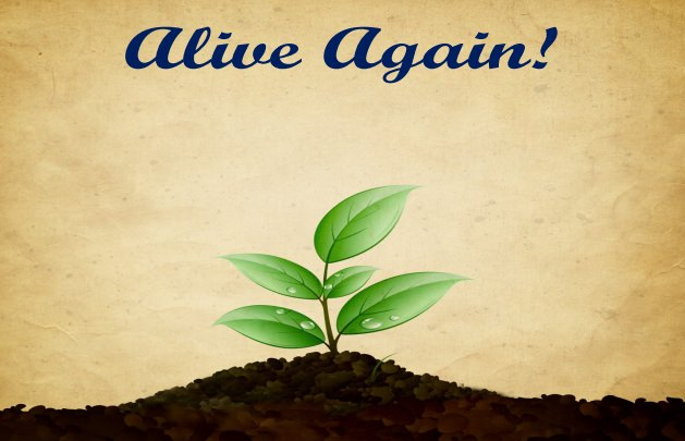 13th March – Alive Again